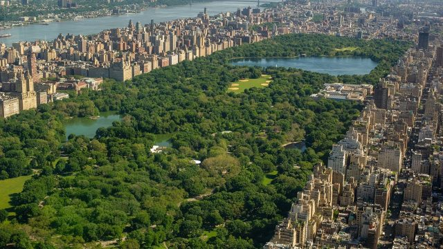 Central Park Conservancy: Our Story