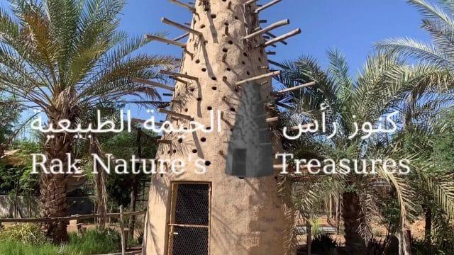 Rak Natures Treasures in Ras Al Khaimah