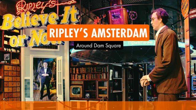Ripleys Amsterdam I Activities Amsterdam